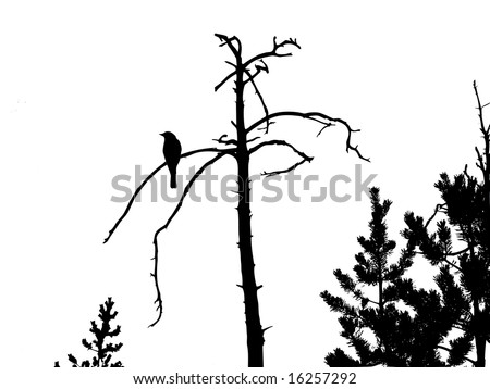 Life/Death Tree tattoo