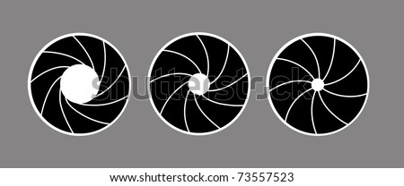 silhouette of the diaphragm on white background