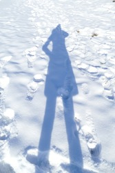 Silhouette of the shadow of people on a snow in the frosty winter day. White background of snow with footprint and traces. Reflection shadow of women.