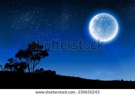 Silhouette of tree against night sky and full moon