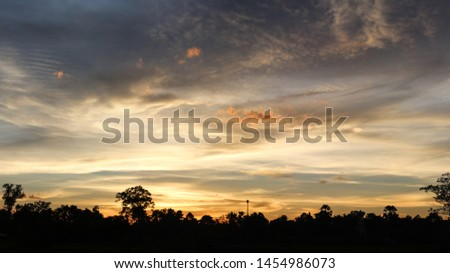 silhouette of tree and sunset sky panorama background. #1454986073
