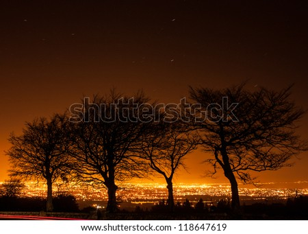 Silhouette of trees against Dublin city light pollution