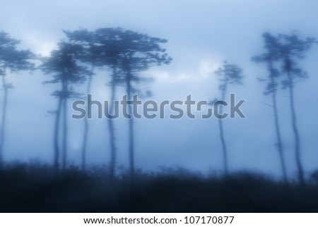 Silhouette of trees in front of a mountain in Japan.