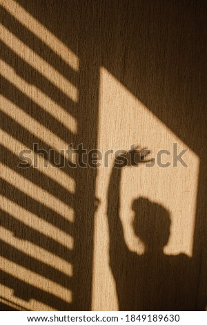 Silhouette of young woman stands with her hand un hiding from sunshine in the morning at home. Contrast window shadows on the wall. Aesthetic shade portrait. Lights and shades. Shade silhouette.