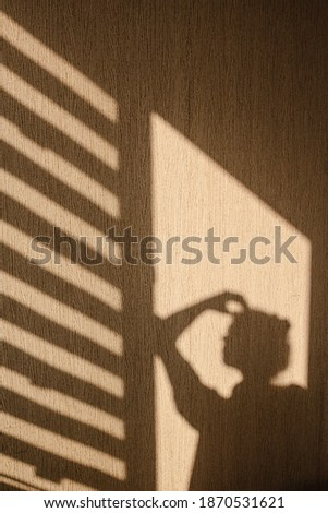 Silhouette of young woman thinking with her hand touching her head in the morning at home. Contrast window shadows on the wall. Aesthetic shade portrait. Lights and shades. Shade silhouette. Stockfoto ©