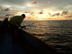 silhouette oh the deep sea angler