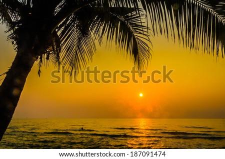 Silhouette palm sunset #187091474
