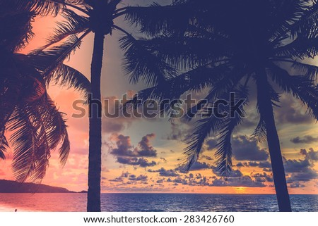 Silhouette palm tree on the beach with sunset - vintage filter and light leak effect processing style