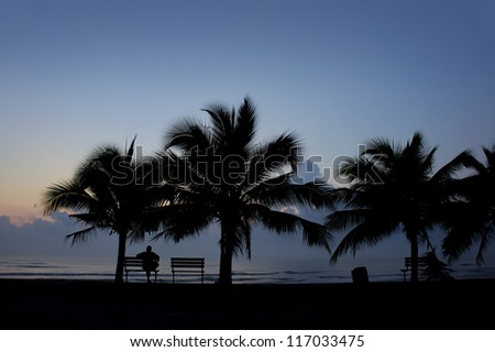silhouette people and coconut tree on sunset