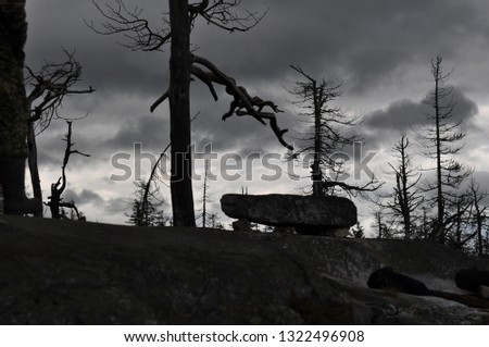 Silhouette photo, view of the dried twisted trees on the stone mountain, the mystical picture of the place of sacrifice