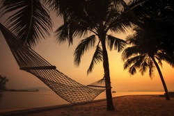 silhouette photography of beach cradle on coconut tree against beautiful sun set lighting