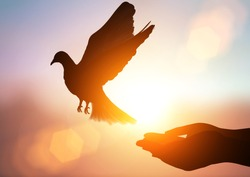 silhouette pigeon flying out of two hand and freedom concept  and international day of peace 2017