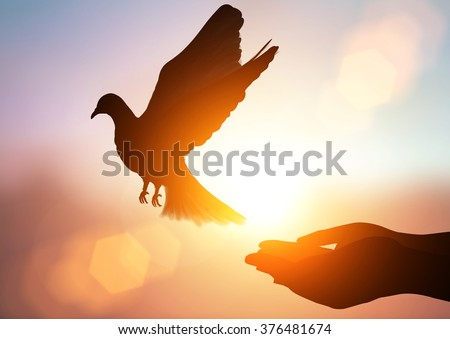 silhouette pigeon flying out of two hand and freedom concept  and international day of peace 2017 - Shutterstock ID 376481674