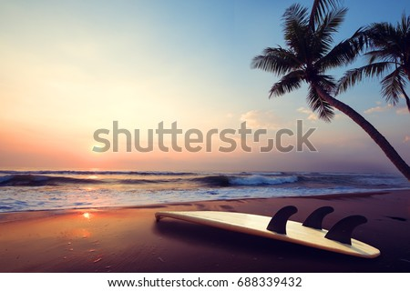 Silhouette surfboard on tropical beach at sunset in summer. landscape of summer beach and palm tree at sunset. Vintage color tone