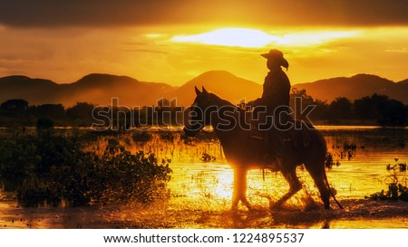 Silhouette the cowboy riding on a mountain with an yellow sky; Concept of friendly  and of summer vacation.