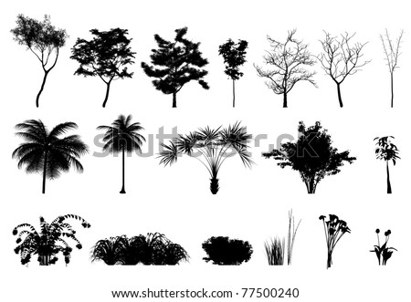 Silhouette: trees, plants and flowers