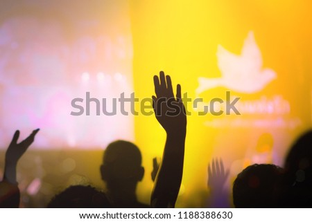 Worship hands on blur background  Free Images and Photos