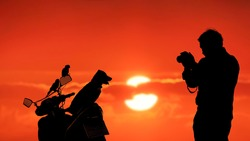 Silhouette young man using camera to taking picture of his pets [puppy and 2 parrots] on motorcycle with blurred colorful sunset sky background