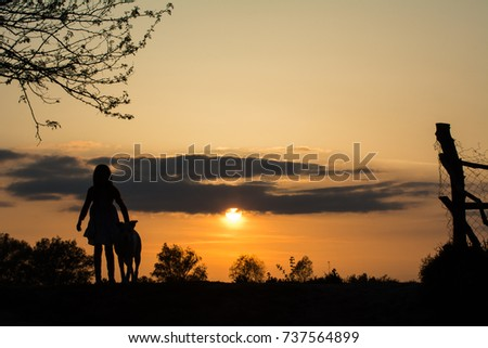 Silhouettes of a girl and her dog at sunset