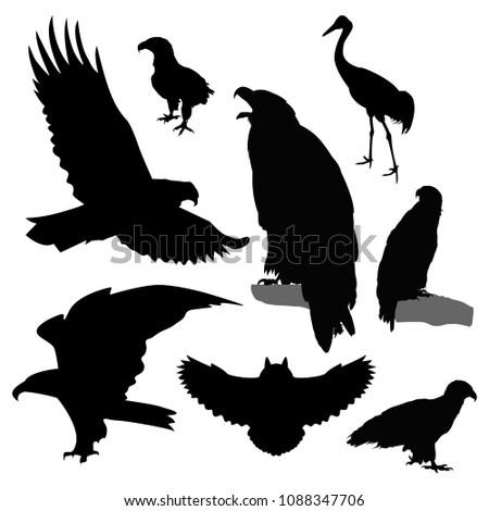 Silhouettes of birds.