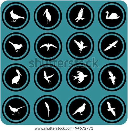 silhouettes of birds. birrds icons