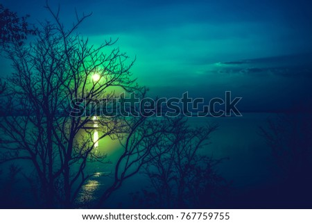 Silhouettes of dry tree against sky and cloud over tranquil sea. Nighttime with moonlight and reflection in water. Full moon behind trees, beautiful nature in the evening. #767759755