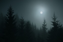 silhouettes of fir trees in the fog at night in the mountains, beautiful full moon