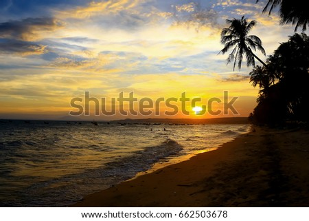 Silhouettes of palm trees at sunset #662503678
