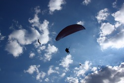 Silhouettes of paragliders and hang gliders in the cloudy sky, bottom view. High quality photo