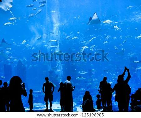 Shutterstock silhouettes of people against a big aquarium