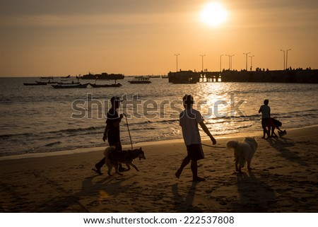 silhouettes of people walking their dogs on the beach at sunset, with fishing boats near a jetty beyond.