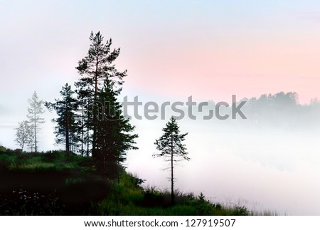 silhouettes of pine trees by lake in fog at dawn
