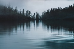 Silhouettes of pointy tree tops on hillside along mountain lake in dense fog. Reflex of pines to calm water of highland lake. Alpine tranquil landscape at early morning. Ghostly atmospheric scenery.