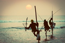 Silhouettes of the traditional stilt fishermen at sunset near Galle in Sri Lanka