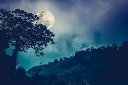Silhouettes of tree against night sky and bright moon, beautiful landscape with moon in the night sky. Outdoors. The moon were NOT furnished by NASA. Cross process and vintage tone effect.