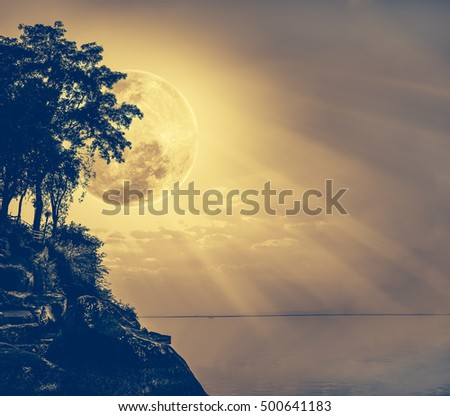 Silhouettes of tree against sky over tranquil sea. Nighttime sky and large moon with ray. Full moon behind trees. Vintage film tone effect. The moon were NOT furnished by NASA. #500641183