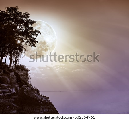 Silhouettes of tree against sky over tranquil sea. Nighttime sky and large moon with ray. Full moon behind trees. The moon were NOT furnished by NASA. #502554961
