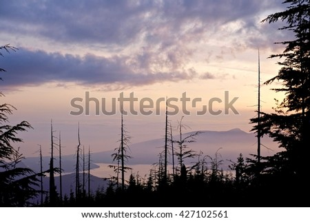 Silhouettes of Trees, Clouds, Ocean and Islands at Sunrise.  View of Bowen Island from Bowen Lookout. Cypress Provincial Park, Vancouver, British Columbia, Canada  #427102561