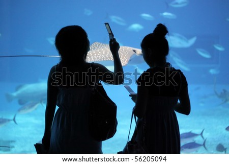 Silhouettes of two young Japanese girls watching manta ray and other fish swimming in swarms underwater