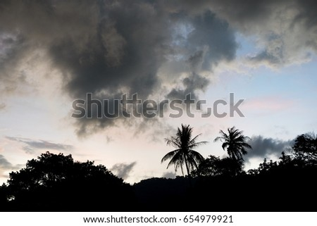 Silhouettes scene of palm tree in dark storm clouds before raining.