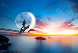Silhoutte of beautiful dolphins jumping up from the sea at sunset with crescent moon