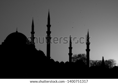 Silhouttes of Suleymaniye mosque in an ancient peninsula of Istanbul,Turkey. #1400751317