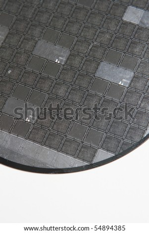 Silicon wafer on a white background