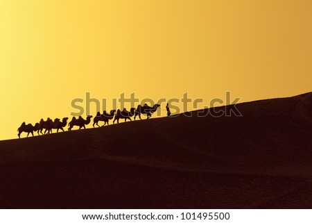 silk road in china - stock photo