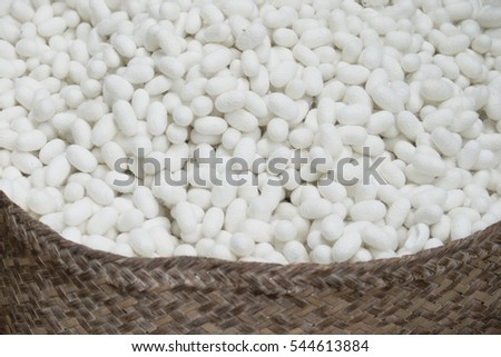 silkworm (Bombyx Mori) cocoons. This is a natural source of silk before it's processed.Natural white cocoon or silkworm nets for background, a source of silk thread and silk fabric