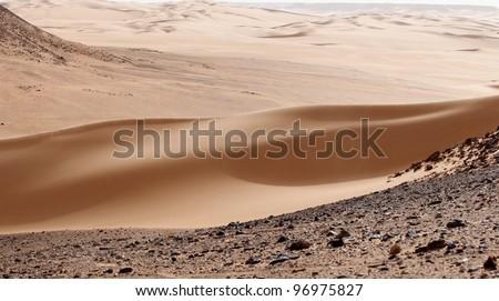Silky Dune