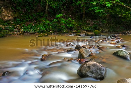 Silky smooth water stream in the jungle
