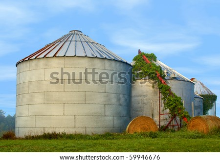 Silos in the morning with blue sky