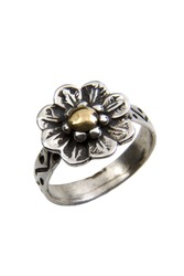 Silver and gold ring over white background