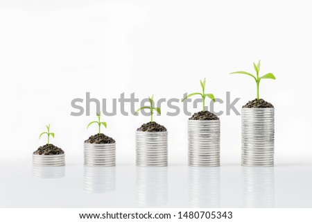 Silver coins and tree growth. Money growth concept, can be use with a variety of businesses #1480705343